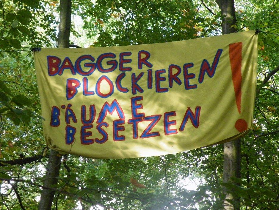 http://eifelraben.blogsport.de/images/DSCF5655kopie1_01.jpg